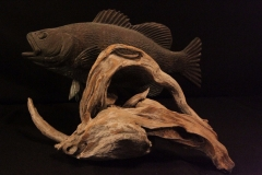 fish-petes-gallery-img52