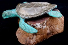 turtles-petes-gallery-img16