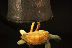 turtles-petes-gallery-img20