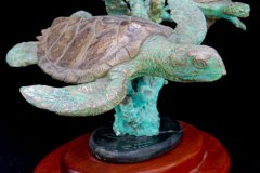 turtles-petes-gallery-img7